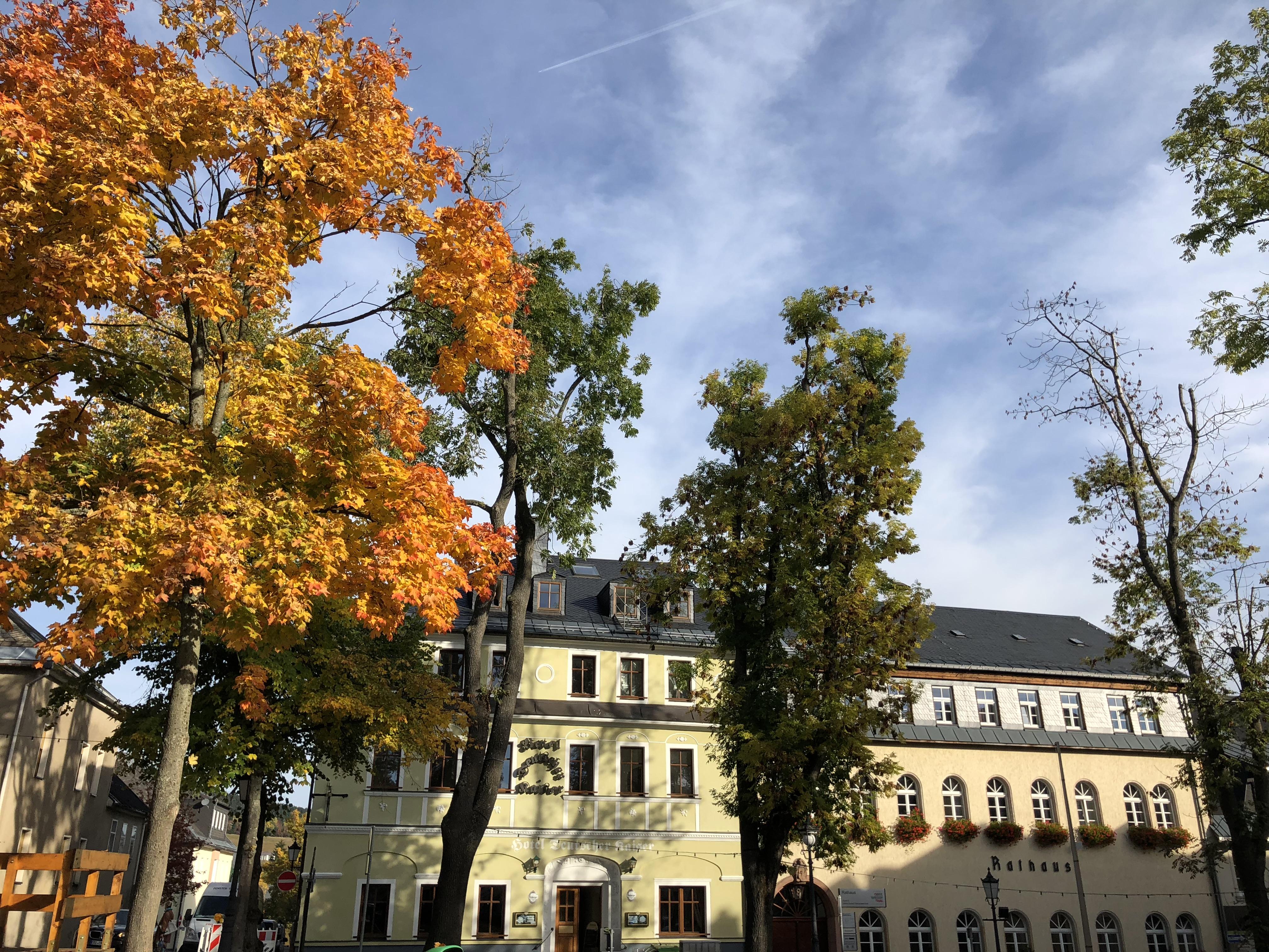 Außenansicht Herbst